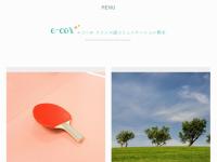 e-cor