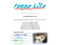 Ferre Life