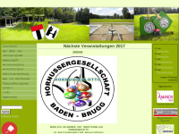 Hornussergesellschaft Baden-Brugg