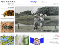 KEI's昆虫採集記
