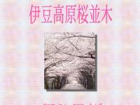 伊豆高原桜並木ホームページ