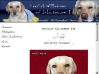 Rettungshund J-Lo