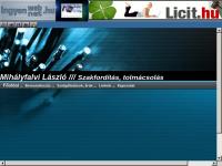 László Mihályfalvi