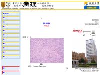 東京大学人体病理学・病理診断学分野