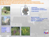 Region Braunschweig - Ostfalen: Mittelalterliche Burgen