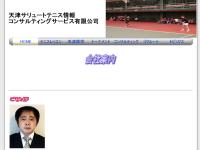 天津サリュートテニス情報コンサルティングサービス