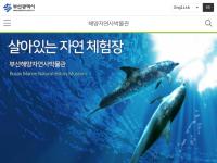 釜山海洋自然史博物館