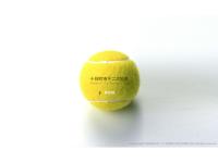 十日町市テニス協会