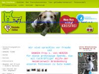 Tierschutzverein Brandenburg und Umgebung e.V.
