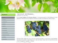 Biowein der Steiermark in Östereich