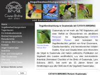 Cayaya Birding