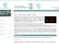 Max-Planck-Institut für experimentelle Medizin München