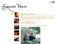 Exquisite Noyse
