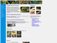 Thomas` Froschseite - Pfeilgiftfrösche als Hobby