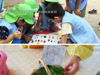 東一の江幼稚園