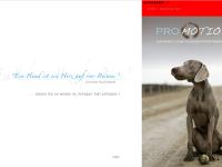Ganzheitliche Hundephysiotherapie Berlin