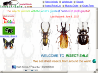 Insect-Sale.com