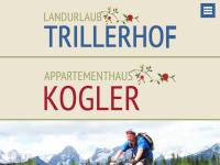 Mountainbike-Pension Trillerhof