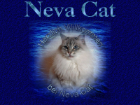 Neva Cat