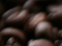 Ökologischer Kaffeeservice - Werner Endres