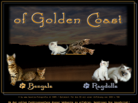 Golden Coast Cattery