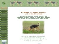 Otterhound-fun