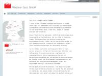 Pleissner Guss GmbH