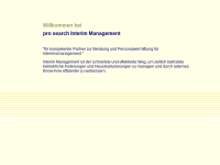 Pro Search Interim Management - Johannes Schlichter