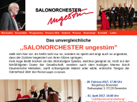 Salonorchester Ungestüm