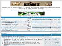 Skorpione entdecken, verstehen und pflegen