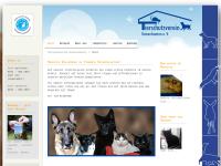Tierschutzverein Kaiserslautern u.U. e.V.