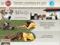 Tierheim und Tierschutzverein Landsberg