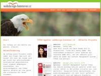 Agentur webdesign-hannover.cc