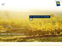 Weinherbst Niederösterreich